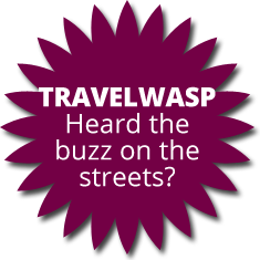 travelwasp disc