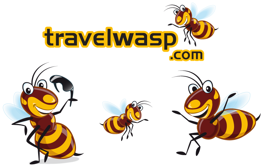 travelwasp branding